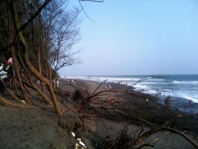 Keindahan Pantai Goa Cemara Bantul