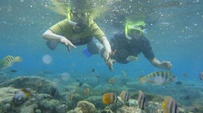 Wisata Bahari Plus Lestari Hayati