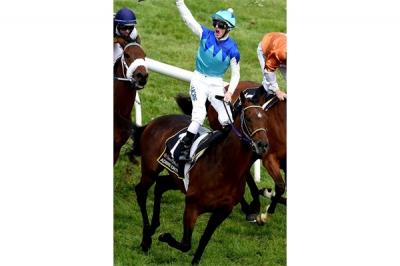 Skandal Doping Kuda Pacu di Australia
