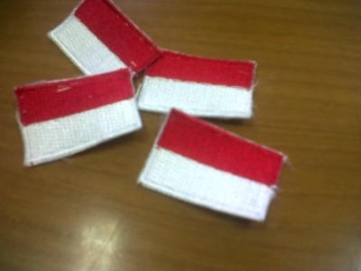 Memandang Indonesia Lewat Generasi Muda